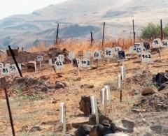 حركة فتح تنظم وقفة احتجاجية للإفراج عن جثامين الشهداء